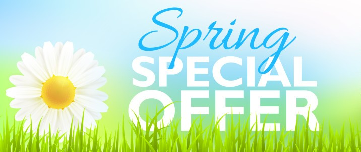 Save 10% on Spring carpet, rug, and upholstery cleaning
